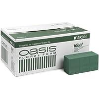 Smithers Oasis Oasis cubo de espuma para flores (caja contiene 20 paquetes)