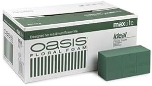 Oasis - Spugna per fiori freschi Ideal Maxlife, confezione da 20 mattonelle