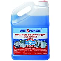 Wet and Forget 10587- 4.54 l, Quitamanchas de Musgo, moho y hongos