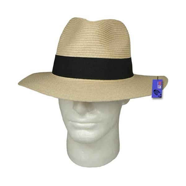 Hey Hey Twenty Fedora Hat with Travel Tube 2
