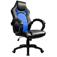 IntimaTe WM Heart PC Gaming Desk Chair, Office Computer Gamer Swivel Recling Chairs with Arms For Adults and Kids