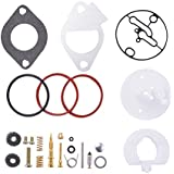 XCSOURCE Kit de Reconstruction Carburateur Briggs & Stratton 796184 Réparation de Carburateur Master Overhaul Nikki MA1150