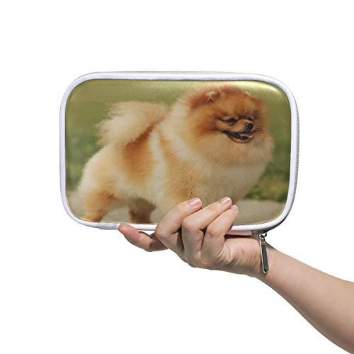 Lustige süße Tier-Hunde-Pomeranian Stifteetui Federmäppchen, multifunktionaler Reißverschluss, Reisetasche, Make-up-Pinsel, Kosmetiktasche für Kinder, Studium, Frau, Mann, Arbeit -