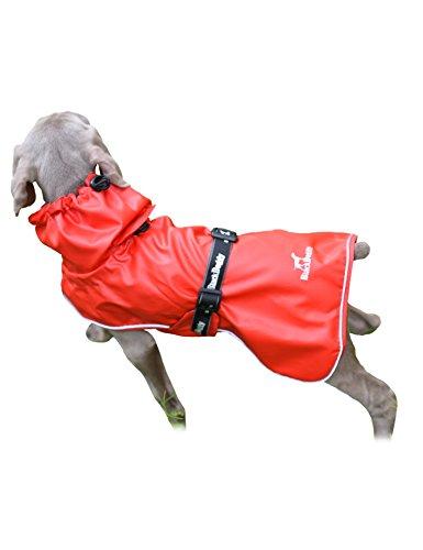 PALMFOX Wasserdichter Hund Regenmantel für Outdoor-Aktivität Breathable Mesh Futter Hundemäntel mit Licht Reflektierende Design Größe S (Regnerischen Spaß-aktivität Tag)