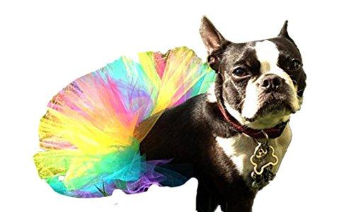 WangsCanis Haustier Hund Gaze Rock Tutu Halloween Party Kostüm Kleid Outfit Katze Prinzessin Kleiner Kleidung (Multicolor)