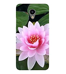 ifasho Designer Back Case Cover for Meizu M2 (Flower Water Lily National Flower Kain Padma Patra )