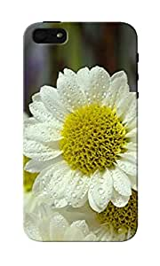 KnapCase Floral Designer 3D Printed Case Cover For Apple iPhone 5