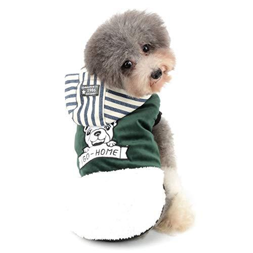 Ranphy Winterjacken Wintermäntel mit Kapuze für Kleine Hunde, Hundejacke Fleece Einlage Hundemantel Baumwolle Gestreift Haustier Kleider Winddicht Jacke Wärme Bekleidung Mädchen Chihuahua für Katze