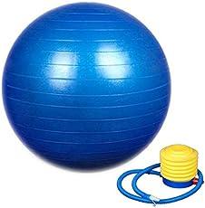 GHARDHANI Exercise Workout Anti Burst Gym Ball 75 cm
