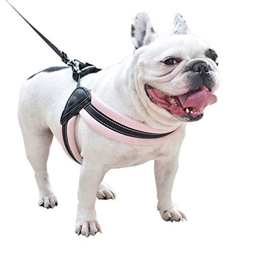 CAOQAO Gilet RéFléChissant Puppy Dog Harnais Laisse RéGlable Harnais Souple Laisse RéGlable Pet Chest Lead Walking Leash avec Clip pour Chien RéGlable Harnais Souple pour Chiot Chats Rose L