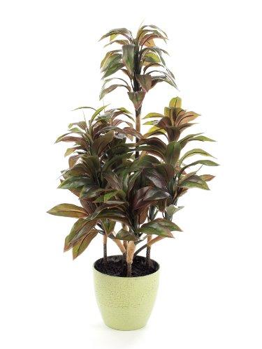 Closer To Nature Kunstblumen 2FT Grün und Weiß Dragon Tree Pflanze–Künstliche Seide Pflanze und Baum Serie