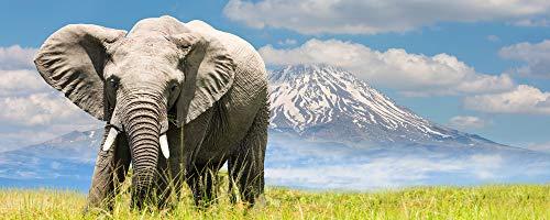"""Infrarotheizung Bildheizung PREMIUM, rahmenlos mit Bild, 1050 Watt, 150x60x1,5 cm, Motiv\""""Elefant\"""""""