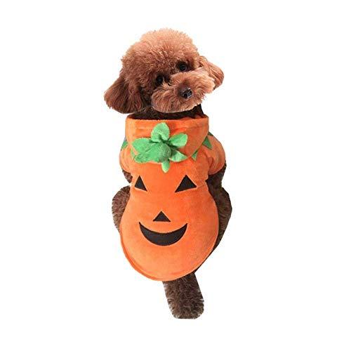 Tiere Tragen Kostüm - SDDSRTY Hundebekleidung Hund Katze Halloween Kürbis Kostüm Haustier Cosplay Kostüm Tier Herbst Und Winter Tragen,XXXXXL