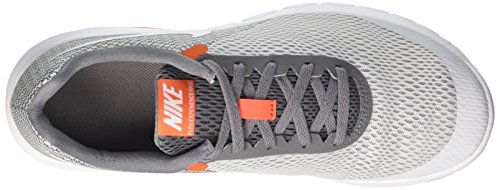 Nike Herren Flex Experience Run 6 Laufschuhe Grau (Pure Platinum/white Cool Grey Orange Cha)
