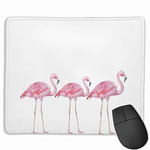 enem Vogel auf weißem Hintergrund für Gaming Mauspad für Zuhause und Büro, 24,1 x 29,5 cm ()