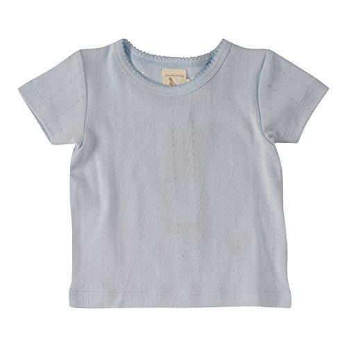 Pigeon Organics Pointelle T-Shirt, Kurzarmshirt für Jungen und Mädchen aus 100% Biobaumwolle (KBA) (3-6 Monate, Baby Blue) Baby-pointelle
