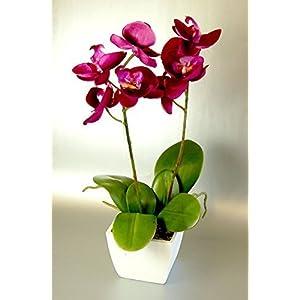 CB Imports – Orquídea Artificial (33 cm), Color Rosa
