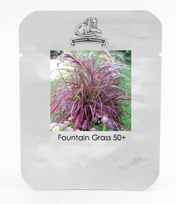 Les pièces de gazon Graines Golf Terrains de soccer Villa Note spéciale Evergreen Lawn des fleurs et des graines de haute qualité