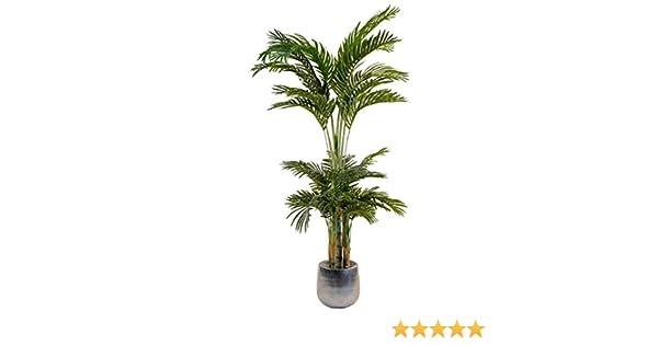 Decovego Palmizio Palma Pianta Albero Artificiale Valse Plastica 180cm