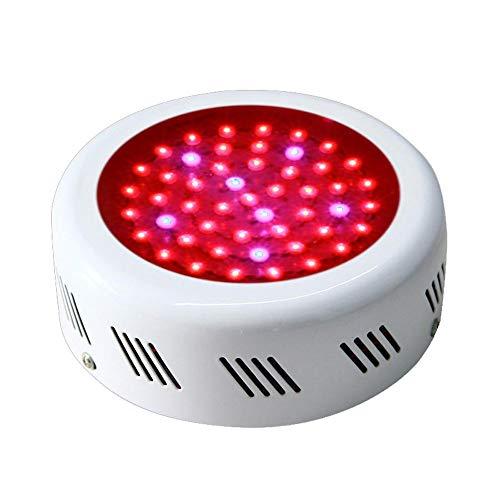 LQHSD LED-Anlage Licht Full Spectrum 50W Wachstum Lampe UFO Eisen Shell Rot und Blau Digital-dimmbare System-Kits wachsen Luftgekühlte Reflektor Hood Set Zur Blüte im Kinderzimmer -