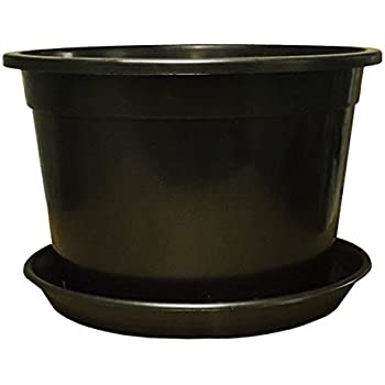 High Quality Large Plant Pots Tree Shrub Plastic Planter Container With Reinforced Rim  And Optional Saucers By Elixir Gardens ®