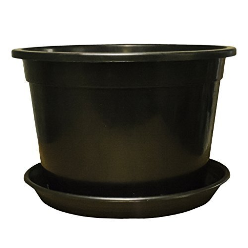 large-plant-pots-tree-shrub-plastic-planter-container-with-reinforced-rim-and-optional-saucers