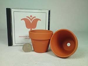 Rainbow - 10 piccoli vasi da fiori in terracotta, 70 mm