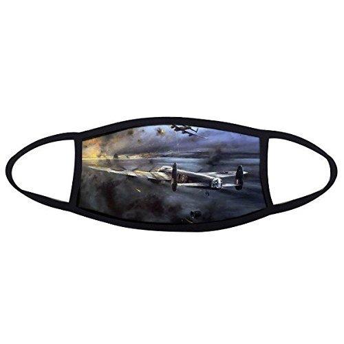 DIYthinker Air Combat der zweiten Weltkrieg II Flugzeugen Air Force Smoky Tragic Military Ölgemälde Face Anti-Staub Maske Anti Kalten Maske ()