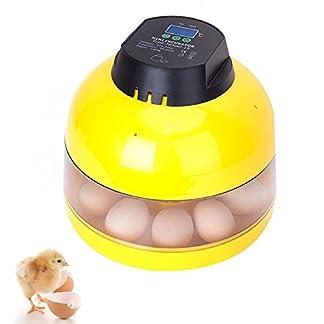 10 Eggs Mini Digital Egg Incubator for Chicken Goose Duck Poultry Hatcher with Egg Tray 10 Eggs Mini Digital Egg Incubator for Chicken Goose Duck Poultry Hatcher with Egg Tray 410 2BNfaGZuL