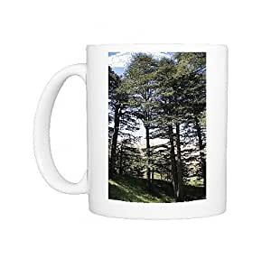 Photo Mug des arbres, de cèdre Bcharre Qadisha Valley (Holy Valley), UNESCO World Heritage