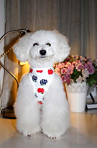 White Kostüm Kleine Apple - Limited Edition Ugly pet Clothes small Apple Casual Cotton Vest Dog Clothes Dog Clothes Teddy Clothing@White_14