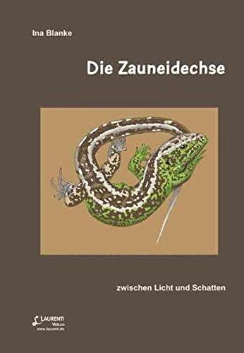 Die Zauneidechse: zwischen Licht und Schatten (Zeitschrift für Feldherpetologie - Beihefte)