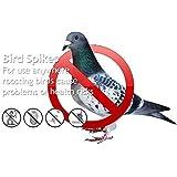 BirdsClog Polycarbonate Bird Control Spikes, 11 Rft (Transparent) - Set of 10