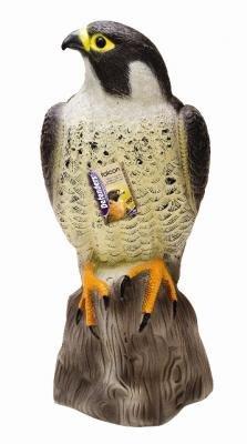 Vogelabwehr - Falke