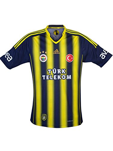 4448ff3d2b9ab 2014-2015 New Season Fenerbahce The Legend Of Striped Kid Shirt