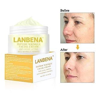 Anti-edad Crema hidratante, Crema Antiarrugas Facial para Día y Noche – Reafirmante, Nutre y Repara – 30 ml