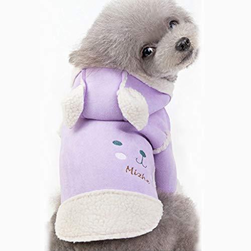 Kostüm Erwachsene Katze Für Funky - Fenverk Hundekleidung Für Kleine Hundepullover Hund Kleidung Herbst Winter Haustier Katze Hundebekleidung Sweater Warm Kapuzenjacke Hundemantel(A Lila,M)