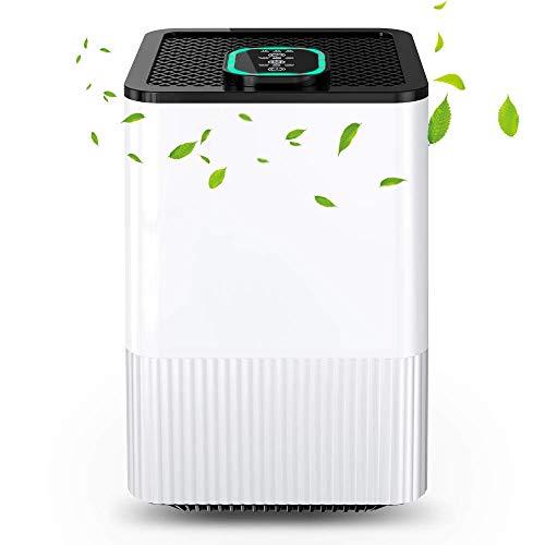 Luftreiniger 4 in 1 mit Echtem HEPA-Filter und Ionisator,Luftreiniger für zu Hause mit Luftqualitätsanzeige und Timer,Capture Allergien,Staub,Pollen,Rauch,Tierhaare usw.Ideal für Zuhause,Büro