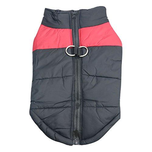 Idepet Haustier Hund Warm Mantel Jacke Wasserdichte Kleidung Kleine mittlere große Haustier Hund Katze Bekleidung Bekleidung Frühling Herbst Winter- (L, Rot)