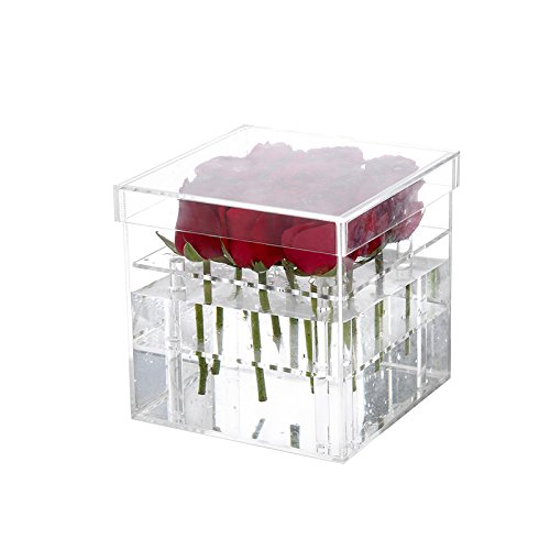 MBW Dekorative Vase Blumen-Box (9 Loch) aus Acryl Abnehmbarer Deckel Geschenkbox Rosen-Box Acryl (Acryl-box)