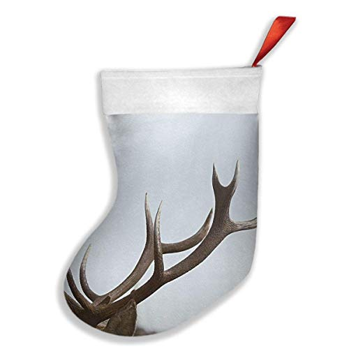 Voxpkrs Clear Christmas Antler During Daytime Weihnachtsfeiertags-Strumpf-Weihnachtssocken für Familienfest-Dekorations-Geschenk -