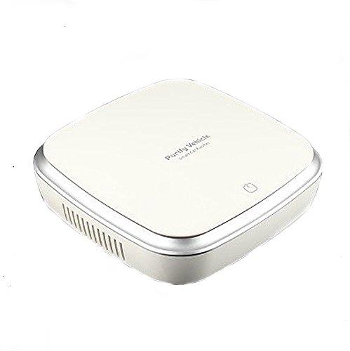 kann entfernen Formaldehyd, Geruch, Haze für Allergien, Raucher, Hause und Auto weiß (Haus-air Filter)