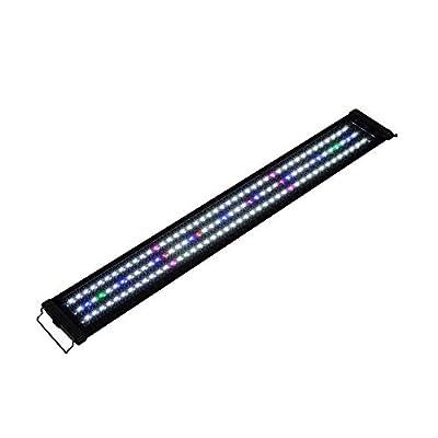 NewPointer Lumière LED Simple pour Aquarium Lumière Corail Spectre Complet Éclairage pour Aquarium