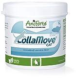 Aniforte Collamove Cat Collagene Marino 80g Polvere per Gatti, Per la Salute delle Anche e delle Giunzioni