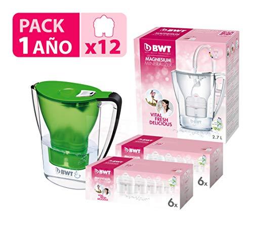 BWT Penguin électronique Carafe d'eau filtrante avec pack spécial 6/12 filtres, polymères plastiques Moderne 12 vert