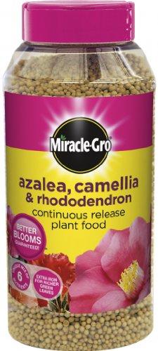 miracle-gro-fertilizzante-a-lento-rilascio-per-azalee-camelie-rododendri-1-kg-1-barattolo-519423