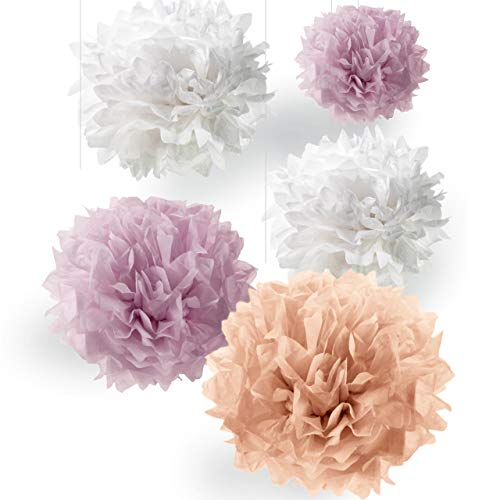 Seidenpapier Pompons-Set   Premium Deko für Ihre Hochzeit und Party   Apricot Hell-Rosa Weiß   Inklusive Ponpon PDF Guides ()