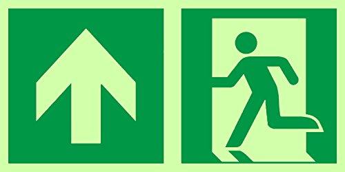 Anro Warnschild für Notausgang E001/5 | Nachleuchtendes PVC Sicherheitsschild Fluchtweg | Selbstklebend Rettungsweg-Schild für Betriebe, Produktion & Kliniken | Farbe: Grün