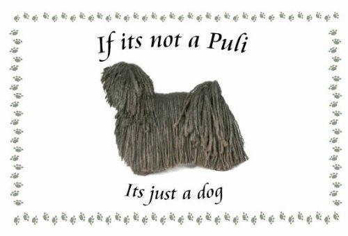 Puli-Novelty Cane Portachiavi-Se non