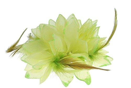 Haar Blume Fascinator Haar Krawatte Clip lime (Blume Und Feder-haar-clips)